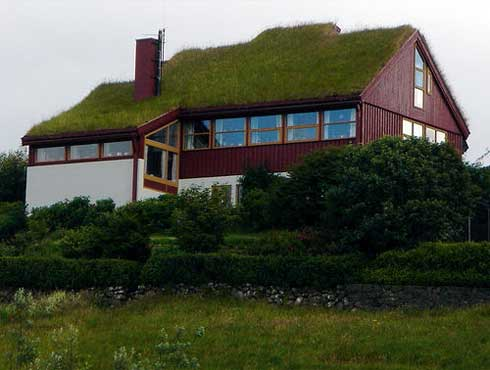Green Roof New House